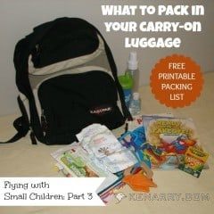 Flying with Small Children: What to Pack in Your Carry-on Luggage - Kenarry.com