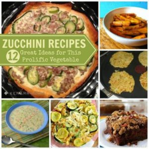 Zucchini Recipes: 12 Great Ideas for This Prolific Vegetable - Kenarry.com