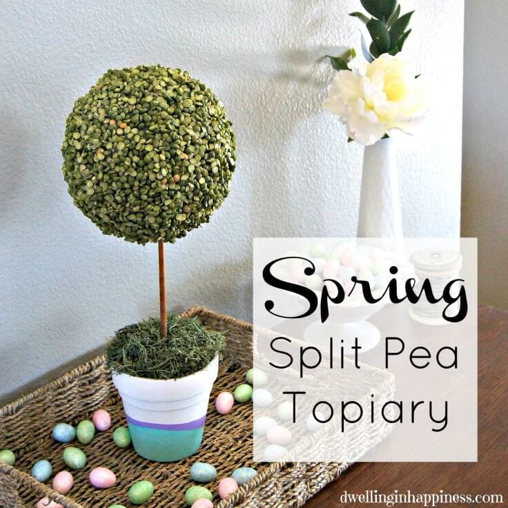 Cute Diy Spring Split Pea Topiary Perfect Centerpiece For Your Decor Or Easter