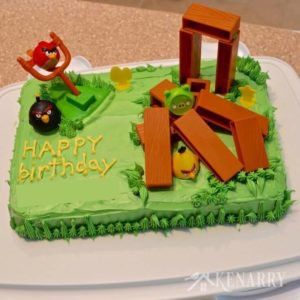 What a fun idea! My child would love this Angry Birds Cake. It's perfect for a kid's birthday party and easy to make too.