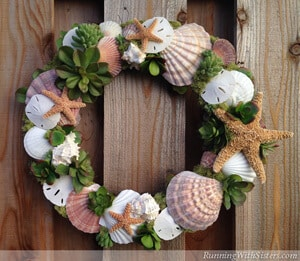 Make a wreath featuring seashells and succulents!