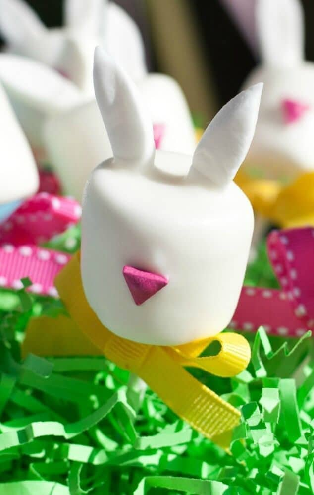 Easter Bunny Marshmallow Pops Tutorial - Frog Prince Paperie
