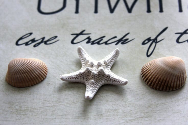 Free Beach Decor Printable Shells