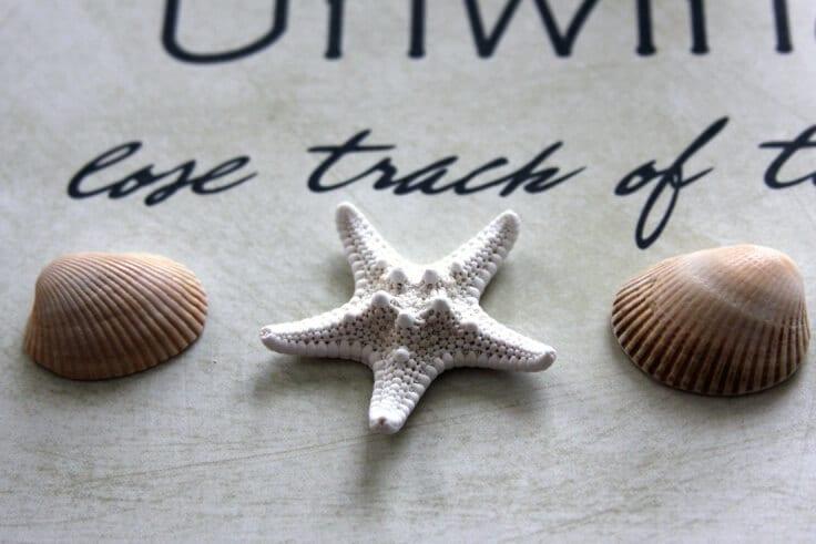 Free Beach Decor Printable Shells