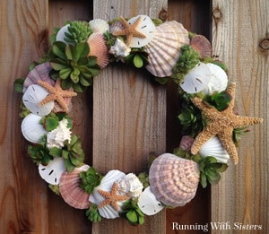 Make a wreath with seashells and succulents!