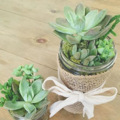 How to turn mason jars into succulent planters
