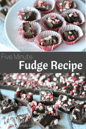 Five Minute Fudge Recipe | TypicallySimple.com