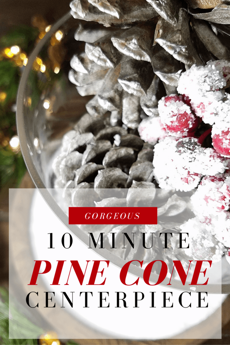 Beautiful pine cone holiday centerpiece that only takes 10 minutes.