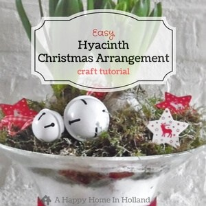 hyacinth-christmas-arrangement