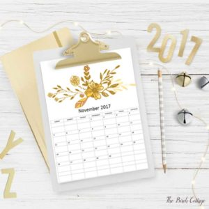 2017 Printable Monthly Calendar from The Birch Cottage