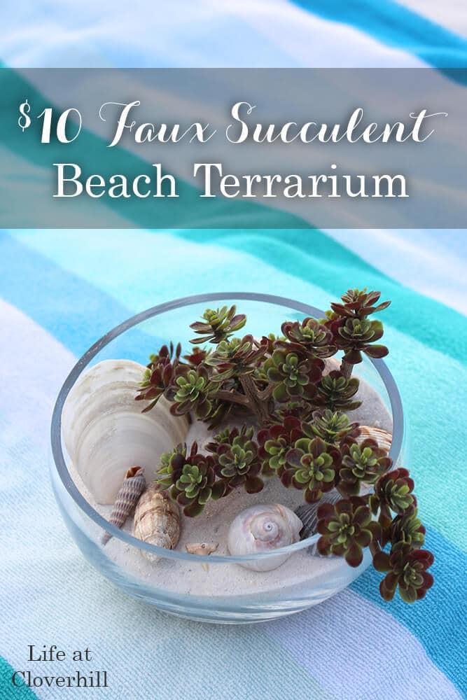 faux-succulent-beach-terrarium