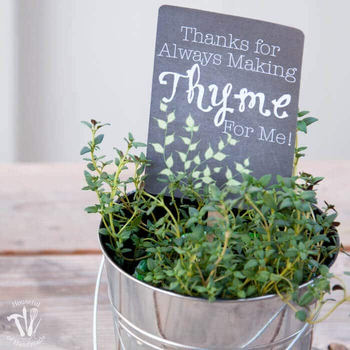 Teacher Appreciation Gift: Potted Herbs with Tags – Houseful of Handmade - Teacher Gift Ideas featured on Kenarry.com