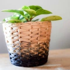 IKEA Hack: Transform an IKEA planter into a DIY ombre planter full of industrial charm.