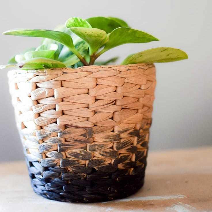 DIY Ombre Planter