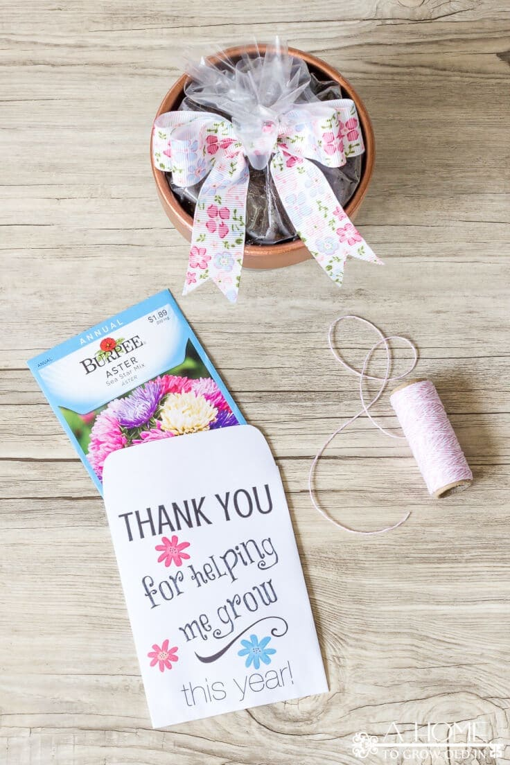 These easy DIY teacher appreciation gifts with a free printable envelope are perfect for the end of the school year! Pin it now, so you won't forget it later!