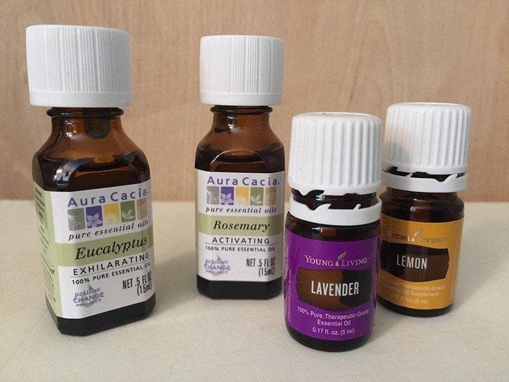 Eucalyptus, Rosemary, Lavender, and Lemon essential oils - this combination makes DIY bug spray