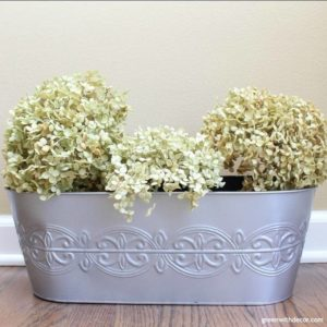 How to make a cheap planter look expensive