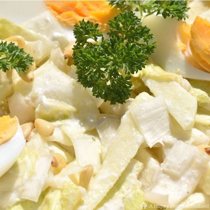 Endive And Apple Salad Recipe - quick, easy and super healthy too!