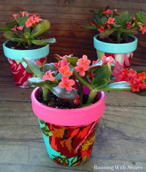 Decoupage mini terra cotta pots with fabric and Mod Podge. Super cute gift idea!