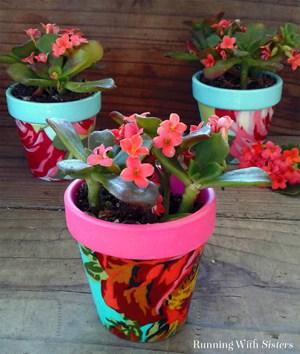 Decoupage mini terra cotta pots with fabric and Mod Podge. Super cute gift idea!