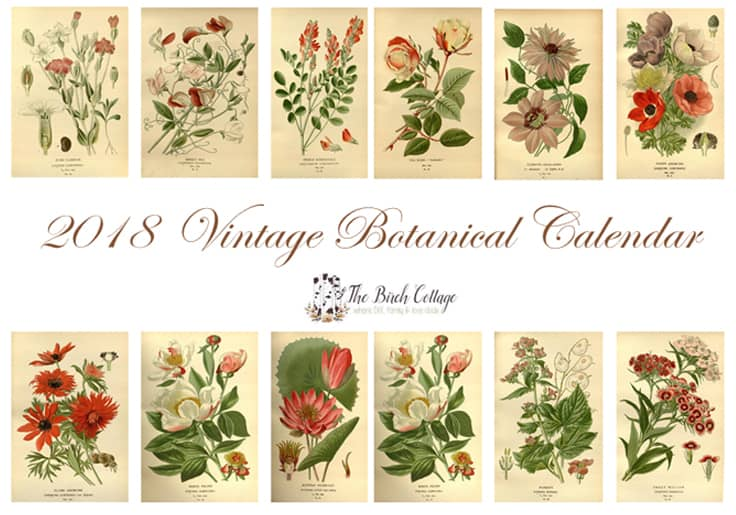 2018 Printable Monthly Calendar featuring Vintage Botanical Illustrations from The Birch Cottage