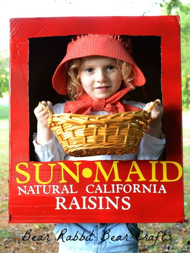 Sunmaid Raisin Halloween Costume – It Happens In a Blink - Halloween Costumes: The 15 Cutest Ideas for Kids featured on Kenarry.com