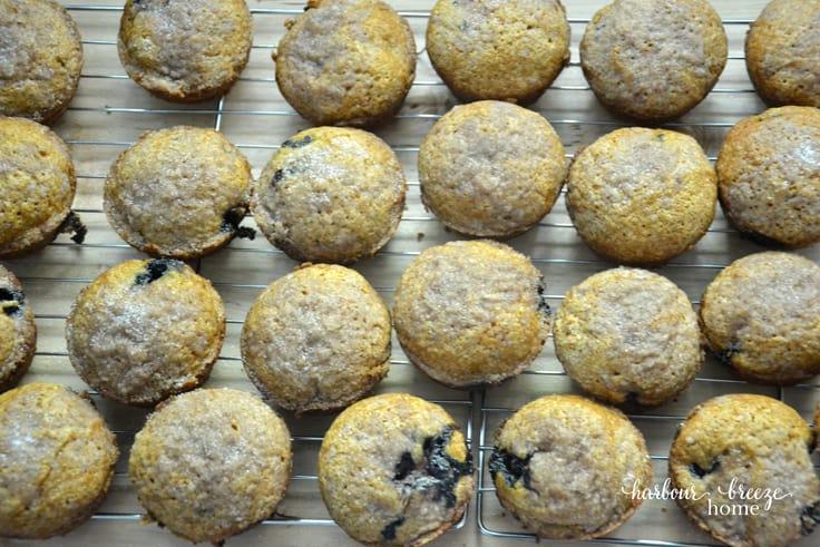 Pumpkin Blueberry Streusel Muffins