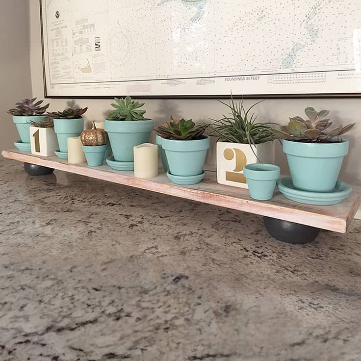 Easy DIY Distressed Wood Tray with Potted Succulents