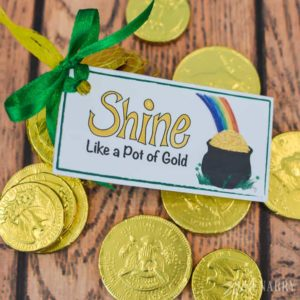 Gold coins, rainbows and these free printable treat tags -- the perfect combination for your St. Patrick's Day party favors.