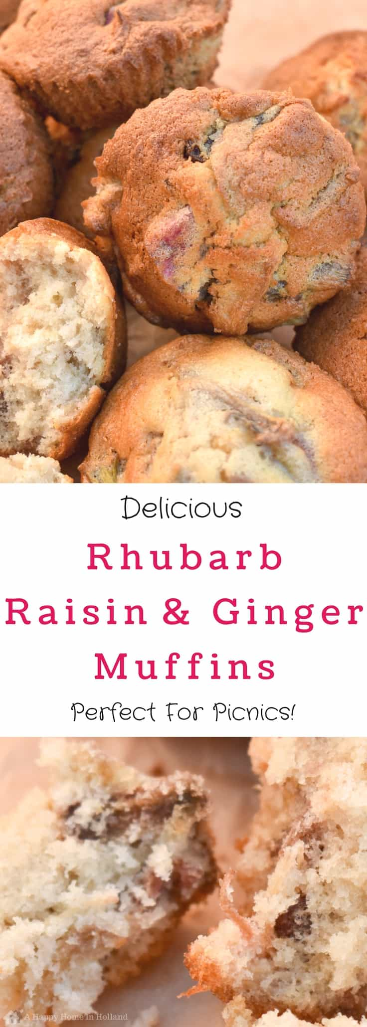 These rhubarb muffins with raisins and ginger are delicious served as a breakfast idea, during an afternoon tea or at a family picnic or potluck.