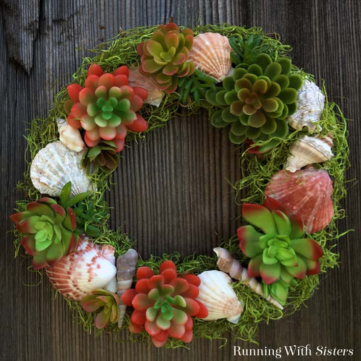 How To Make A Succulent Seashell Wreath