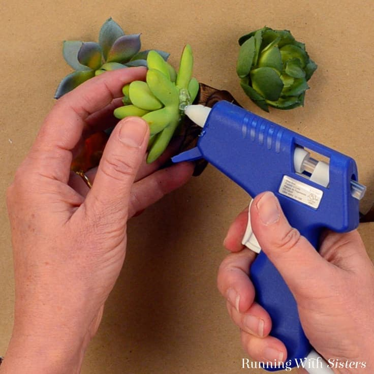 Make these easy succulent napkin rings in minutes from a paper towel roll, ribbon, and dollar store succulents! Video tutorial and written instructions.