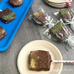 Chocolate Dipped S'mores on a Stick Summer Party Treat; TrishSutton.com