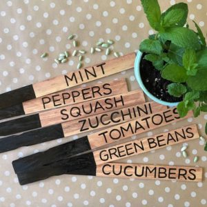 Easy and Cheap DIY Plant Markers for Your Garden