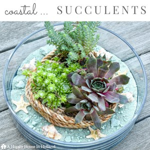 Learn how to make a chic coastal succulent planter using this easy to follow tutorial over on ahappyhomeinholland.com