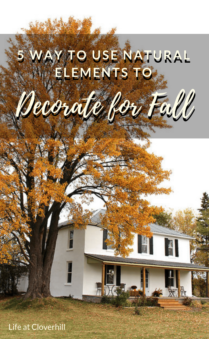 decor natural elements decorating with natural elements bring the outdoors in with this ... natural elements into your home for the season. Take inspiration from  the great outdoors when decorating for fall this year. From acorns and