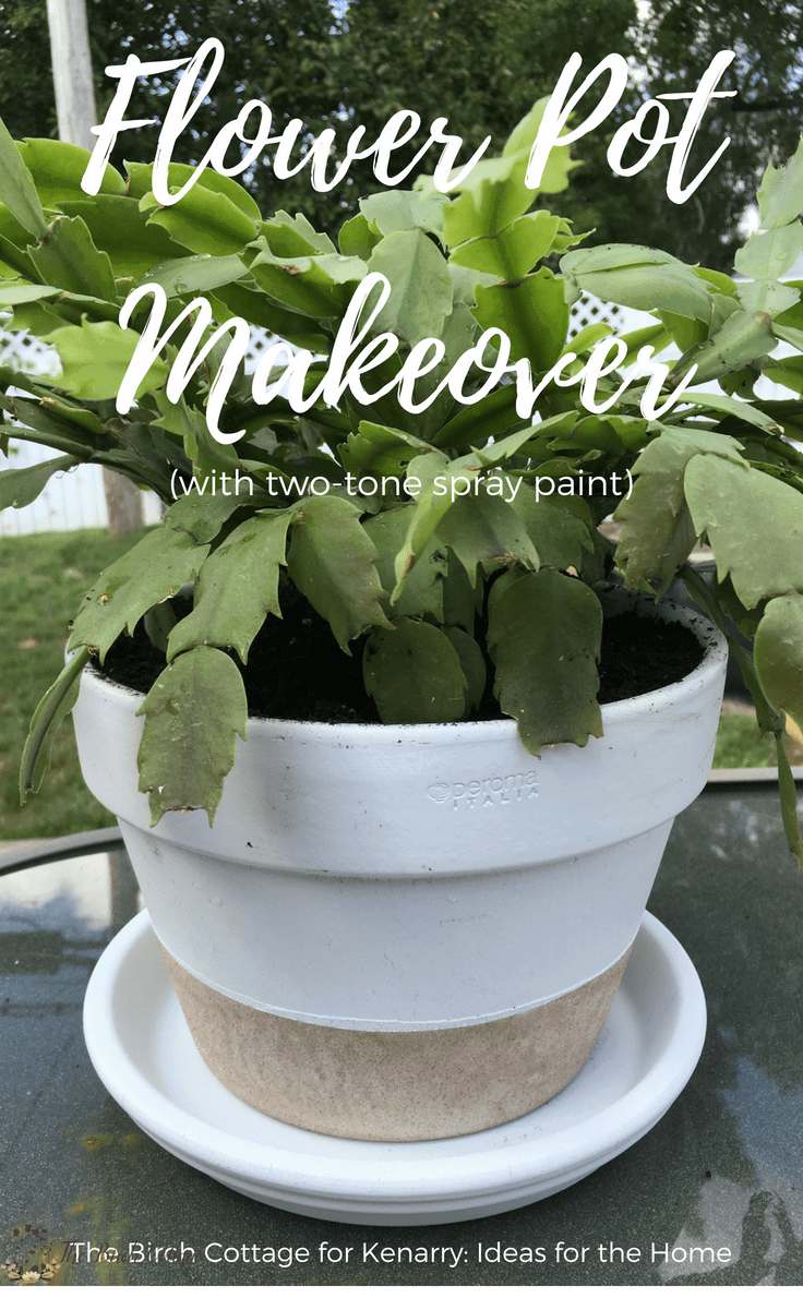 Ideas For Spray Painting Flower Pots - Flowers Healthy