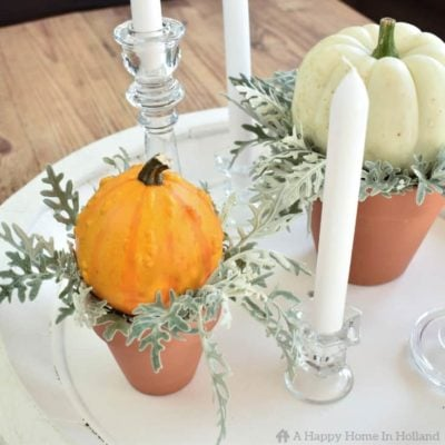 Learn how to create a simple but stylish display using pumpkins and gourds.