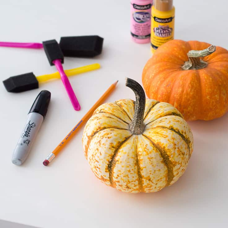An easy-peasy DIY for Thanksgiving - a pastel pumpkin centrepiece that say
