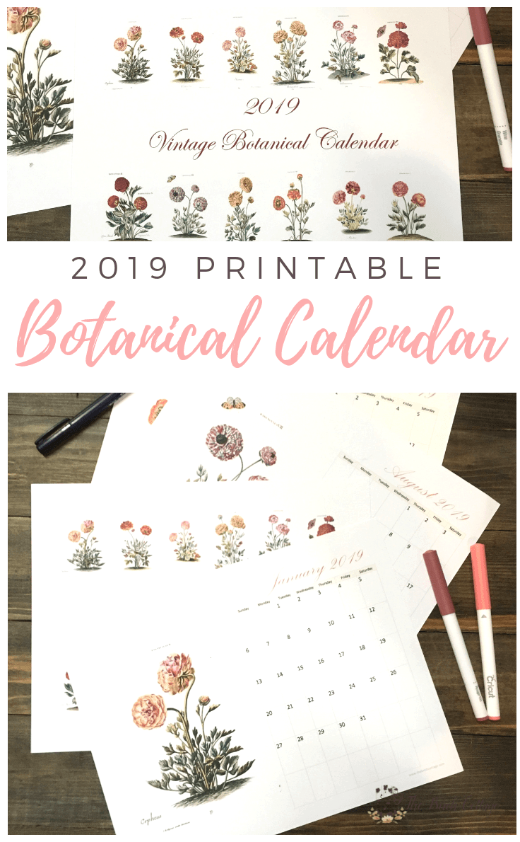 2019 Printable Monthly Calendar With Vintage Botanical Art Kenarry