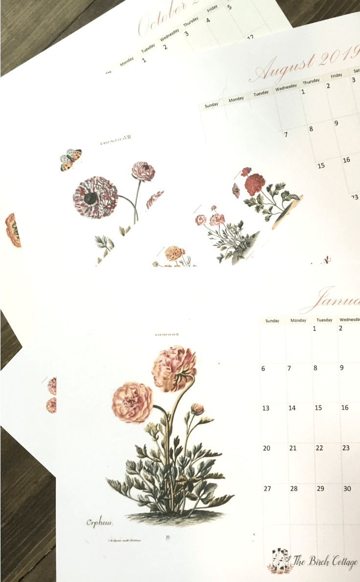 Use this free 2019 printable monthly calendar with vintage botanical art to record your important dates. You can also use it as a wall or desk calendar. It looks beautiful printed in both color and black and white. #calendar #freeprintables #kenarry