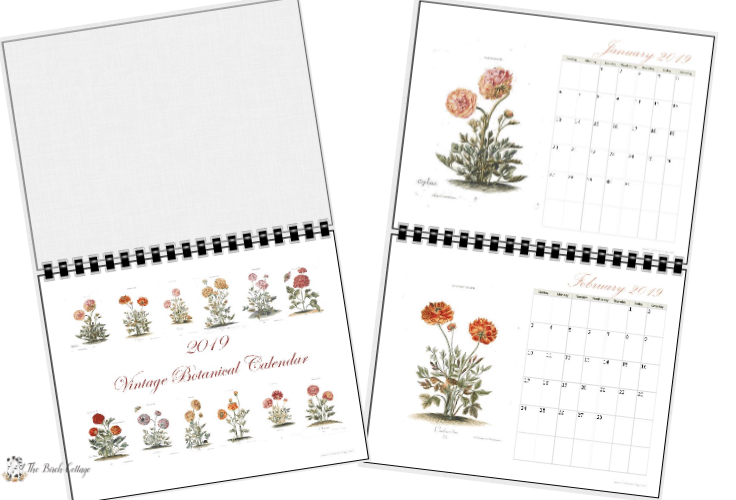 2019 Printable Monthly Calendar With Vintage Botanical Art by The Birch Cottage