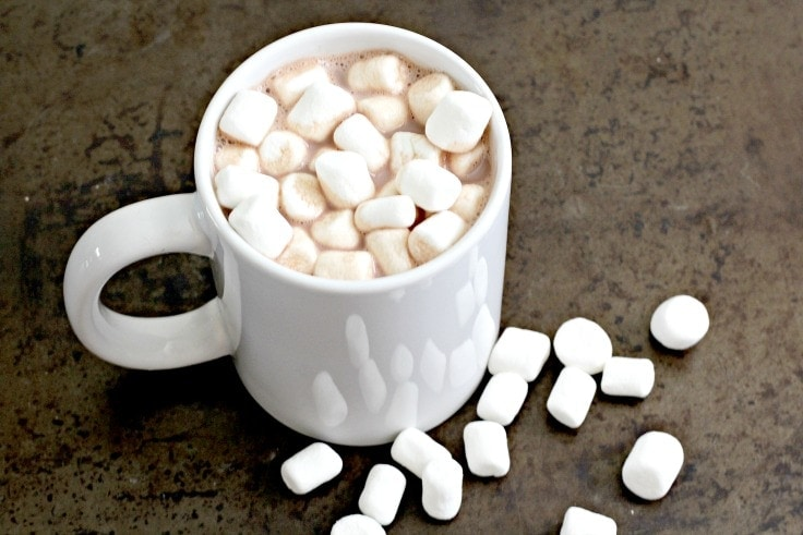 Single serve cup of hot chocolate with marshmallows.