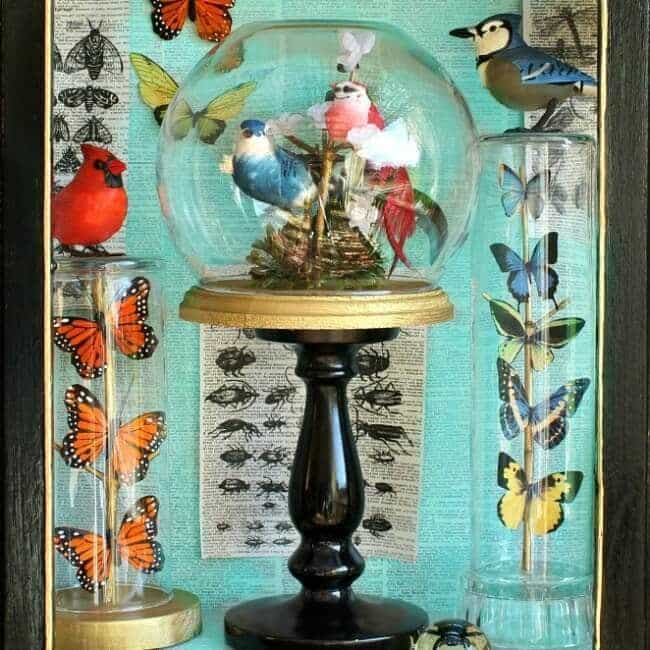 Birds and Butterflies Under Glass