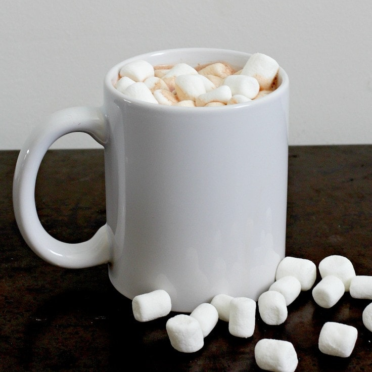 Single Serve Hot Cocoa Recipe Easy
