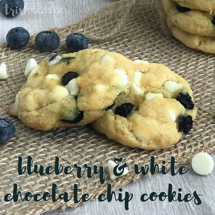 A slightly sweet easy and unique recipe for the best Blueberry White Chocolate Chip Cookies from scratch that are melt in your mouth soft and sure to be loved by any crowd. #cookies #cookierecipe #kenarry
