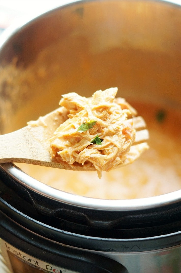 A wooden spoon with creamy shredded chicken made in the Instant Pot.