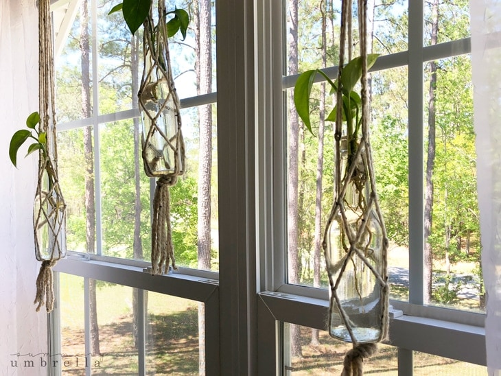 How To Make A Macrame Plant Hanger With Easy Supplies