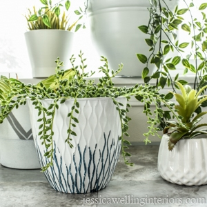 image of modern indoor plant pots with plants made from pots found at the dollar store
