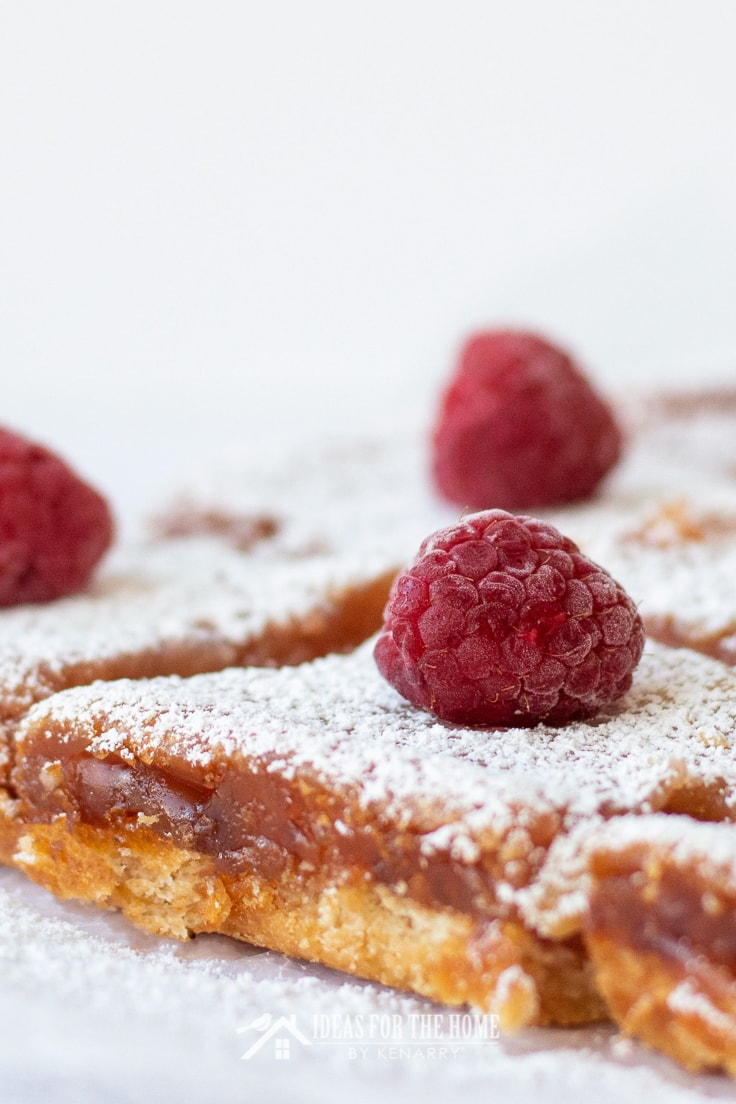 Close up of a fresh raspberry on top of a raspberry lemon bar sprinkled with powdered sugar.